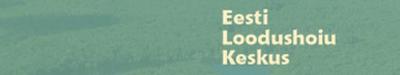 Tunnusgraafika disain veebilehele